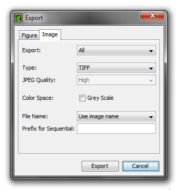 Export Images